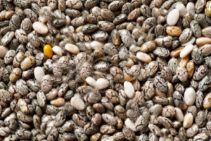 Super Foods - Chia Seeds - Fit Women over 40